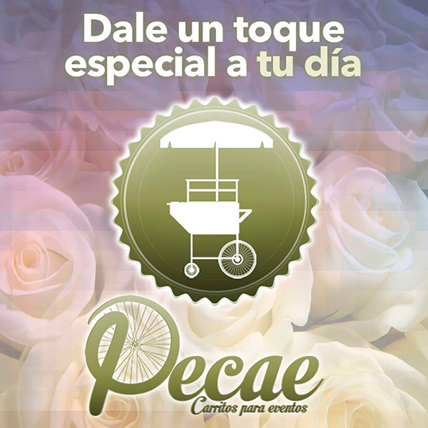 Diseño banner CARRITOS PECAE