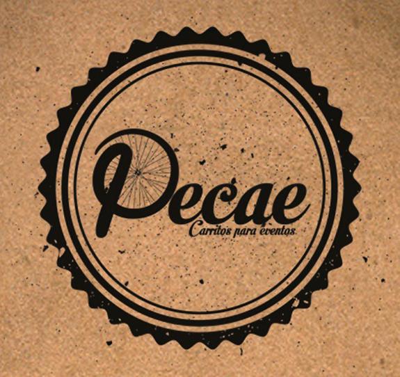Diseño de imagen ciruclar logo CARRITOS PECAE