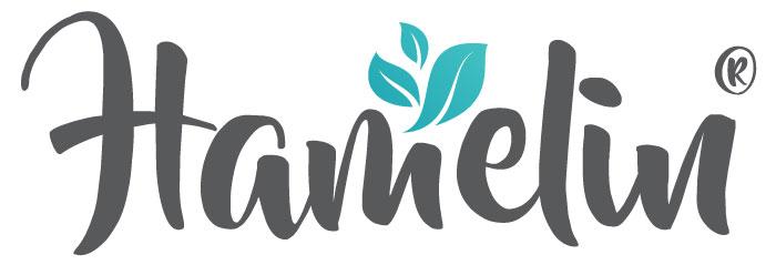 logo HAMELIN